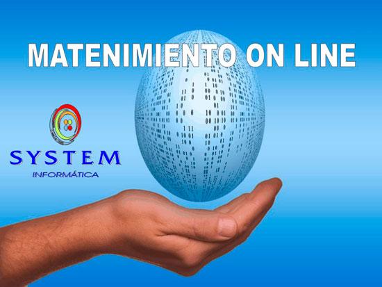 Mantenimiento online System Informática